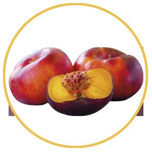 Fruta de hueso, platerina